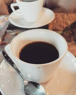 kopi luwak, luwak coffee, poop coffee, bali tourism