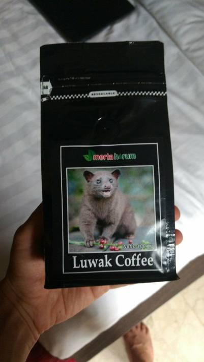 kopi luwak, luwak coffee, bali, bali tourism